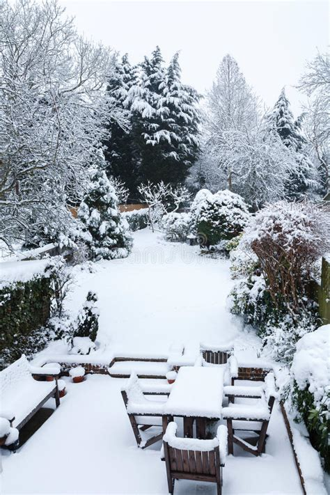 Snow Covered Garden And Patio Stock Photo  Image Of. Patio Living Plus Reviews. Metal Patio Table Square. Build A Patio From Concrete Pavers. Plain Concrete Patio Ideas. Garden Patio Brush. Patio Cover Ideas Rain. Pvc Outdoor Bar Furniture. Denver Area Patio Homes