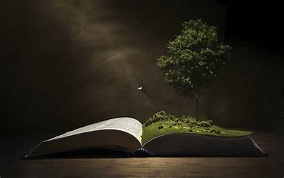 Background Tree Knowledge Backgrounds Wallpapers Desktop Books