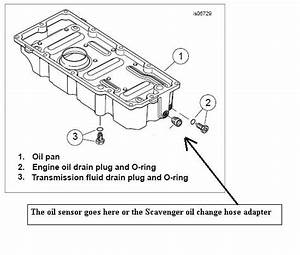 Scavenger Oil Change System For Touring 1999-up