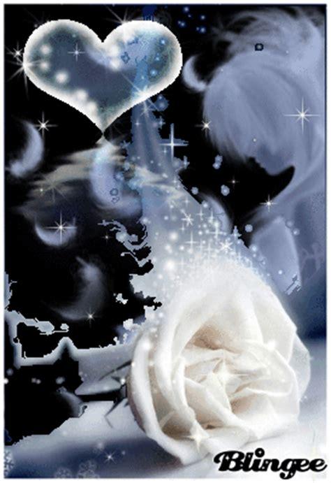 immagine rosa bianca  blingeecom
