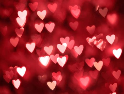 6 Tips That Will Help You Survive Valentine's Day | L&ML ...