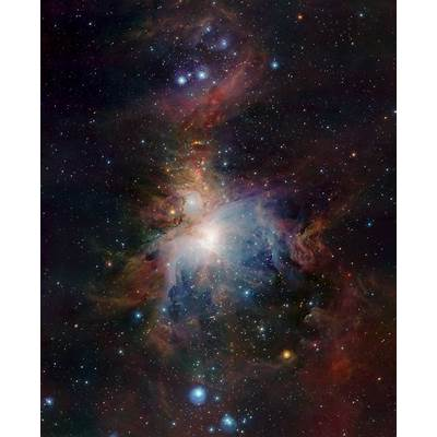 VISTA's infrared view of the Orion Nebula*ESO