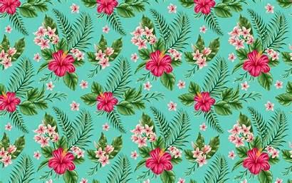 Hibiscus Pattern Wallpapers Donut Maker Iphone Wallpaperstock