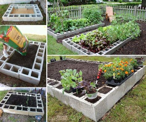 grow fruit and vegetables in a cool raised garden bed
