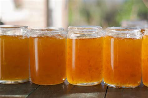 grapefruit marmalade recipe