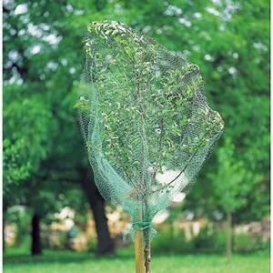 Protection Arbres Fruitiers : oiseau guide d 39 achat ~ Premium-room.com Idées de Décoration