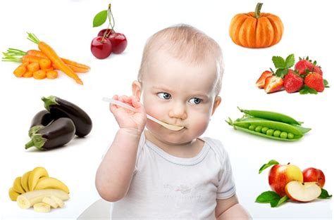 cuisine saine et rapide les recettes babycook préférées de bébé bebelicieux
