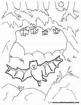 Cave Coloring Clipart Bat Cartoon Preschool Bats Template Webstockreview Pencil Designlooter Sketch Found Drawings sketch template