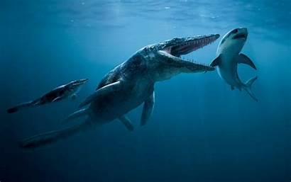 Prehistoric Dinosaur Ocean Marine Reptiles Awesome Re