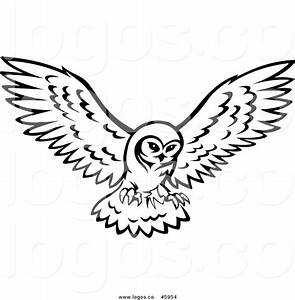 Owls Flying Clipart (36+)