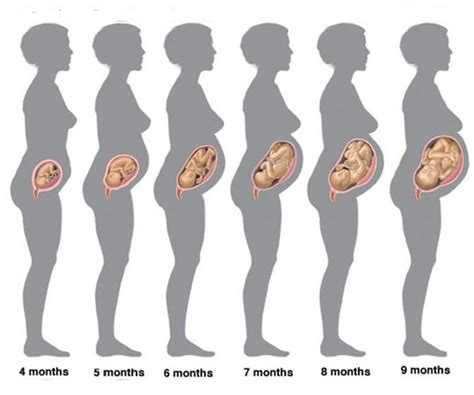 Cytotec 9 Weeks Pregnancy Tips Pregnancy Tips Advice For Mum To Be Page 3