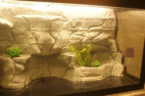 decor fond terrarium desertique d 233 cor jungle decotim best free home design idea inspiration