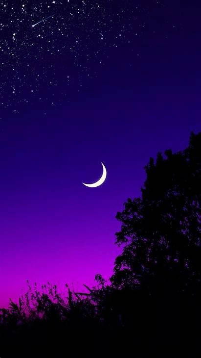 Moon Sky Tree Starry Night Stars Dark