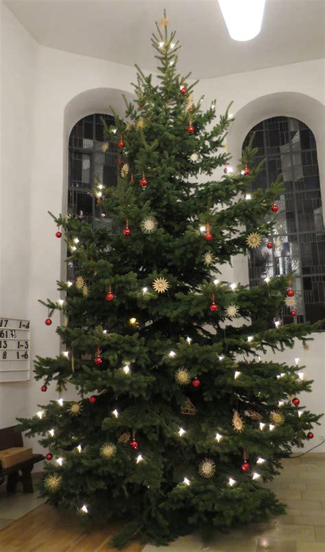 supergross und superschoen der weihnachtsbaum  der