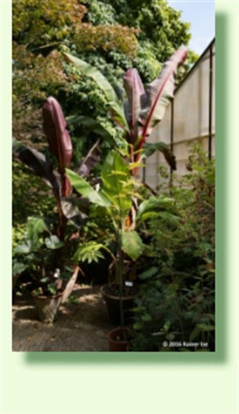 Botanischer Garten Xanten by Steyl Botanischer Garten