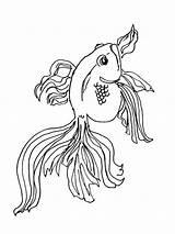 Coloring Goldfish Ausmalbilder Goldfisch Fish Printable Ausdrucken Malvorlagen Kostenlos Zum Goldfishes sketch template