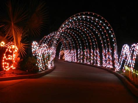 festival of lights moody gardens galveston picture