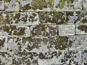 Grünbelag Entfernen Pflaster : richtig reinigen net part 2 ~ Lizthompson.info Haus und Dekorationen