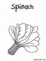 Spinach Coloring Clipart Drawing Sheets Pages Flannel Boards Fresh Weather Cut Sheet Food Google Draw Clipartix Worksheets Tornado Getdrawings Fruit sketch template
