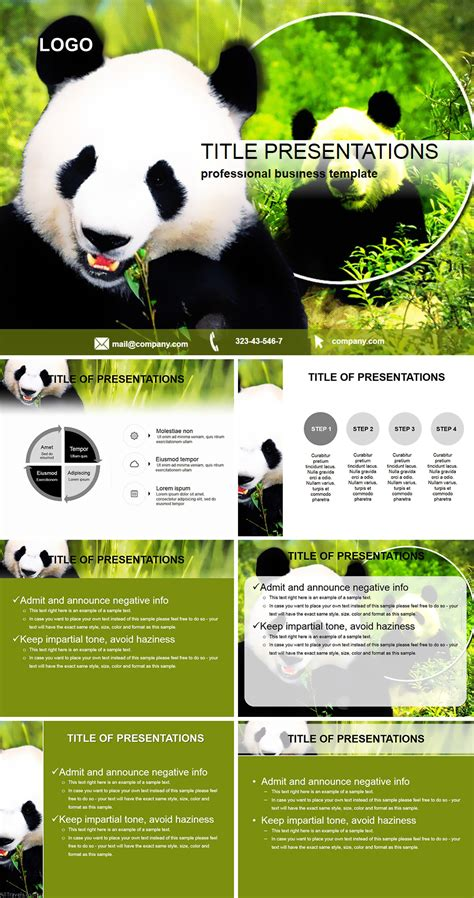 giant panda powerpoint template imaginelayoutcom