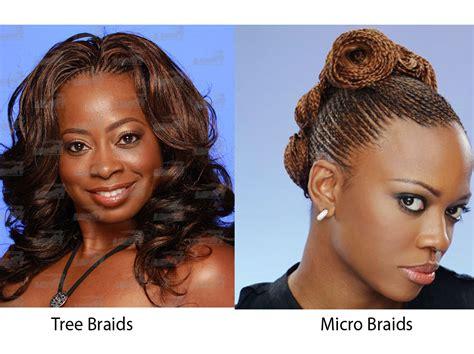 Tree Braids vs Micro Braids   iLookWar.com