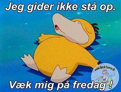 Billeder Sjove Med God Grin Dansk Du