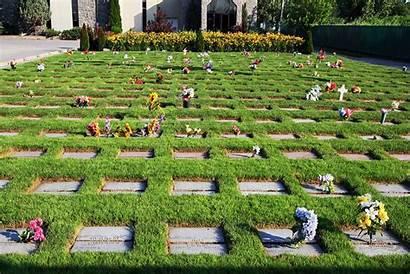 Cendres Lot Inhumation Poirier Magnus