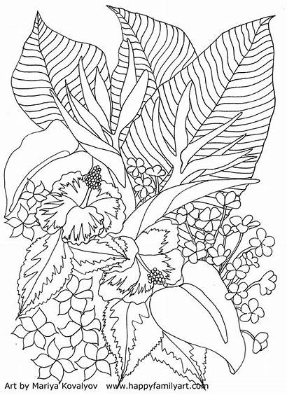 Coloring Pages Tropical Flowers Flower Adult Colouring