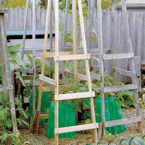 diy tomato cage ideas page    bless  weeds