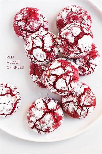 Velvet Crinkle Cookies Christmas Season Tis Take