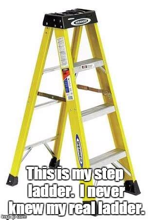 Ladder Meme - whose your ladder imgflip