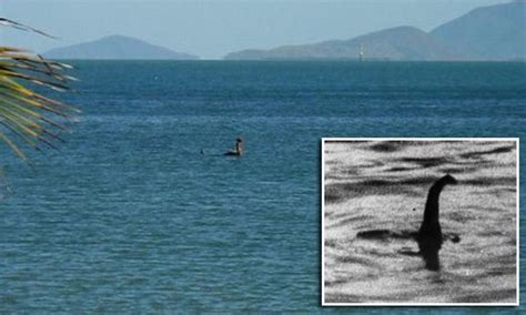 loch ness monster left scotland    nessie  creature spotted