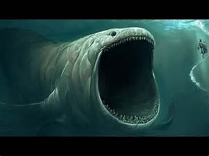 BIGGEST Animal EVER Recorded in the Ocean Depths? - YouTube