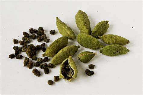 what is cardamom cardamom cardamom days food