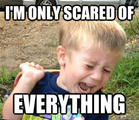 Scared Cat Meme - i m only scared of everything scaredy cat sam quickmeme