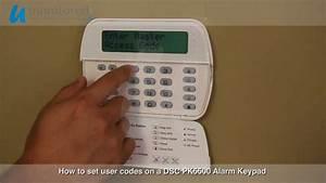 Clifford Alarm Manual