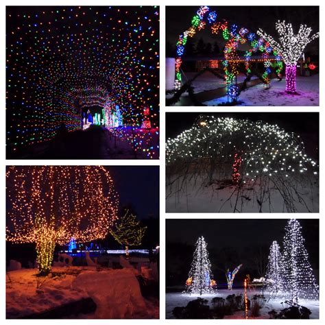 detroit zoo lights lmstudio larson mirek design