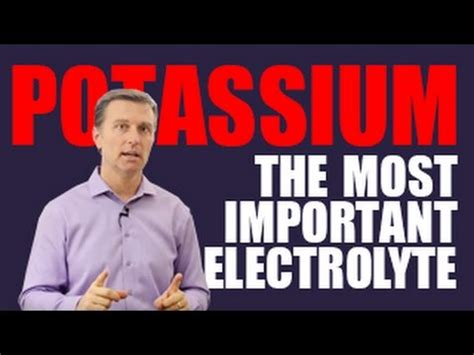 Image result for dr. eric berg dc and potassium