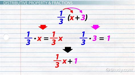 How To Use The Distributive Property With Fractions  Video & Lesson Transcript Studycom