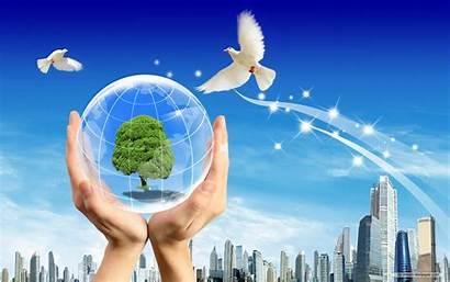 Environmental Wallpapers
