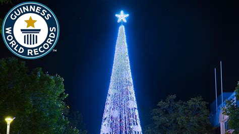 tallest xmas teee in tge workf largest display of lights on an artificial tree guinness world records