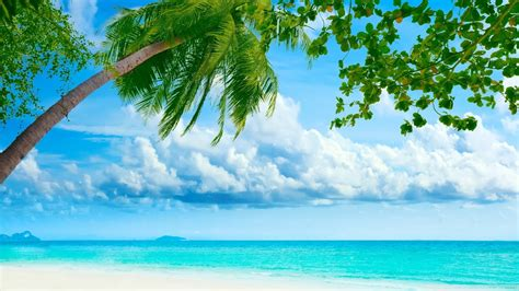 tropical beach most famous places