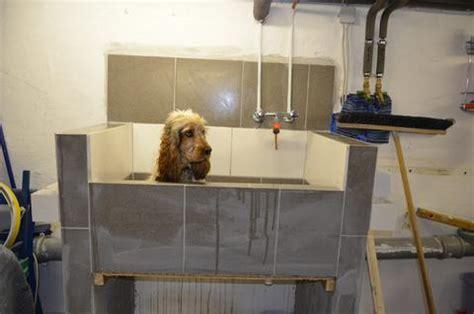 Hundedusche Selber Bauen by Hundebadewanne Booster Bath Abdeckung Ablauf Dusche