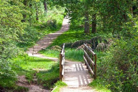 woodland walks   hours drive  liverpool