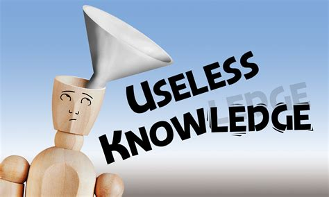 Joey Bonifacio Useless Knowledge  Joey Bonifacio