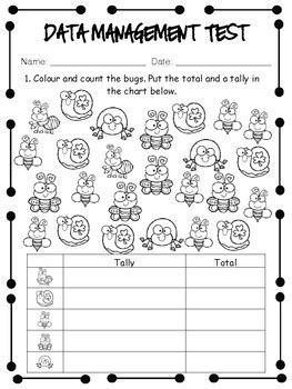 grade 2 data management unit test by miss page s classroom