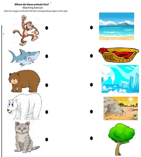 animal sound matching animals worksheets for 8