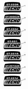 Echo Gt