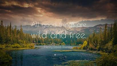 Wild Things Thoreau Henry David Quotes Quote