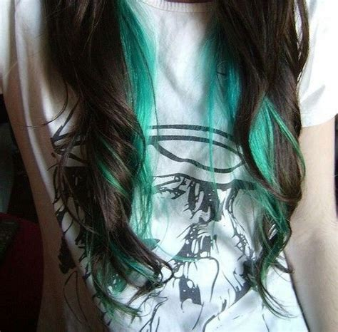1000 Ideas About Teal Highlights On Pinterest